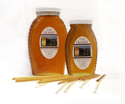 Picture of WSU Produced Honey