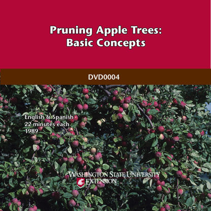 Imagen de Pruning Apple Trees: Basic Concepts (English & Spanish)